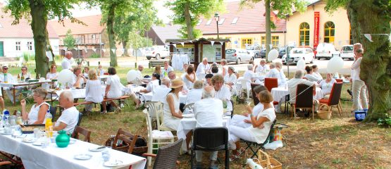 3. Picknick in Weiß