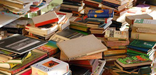 Literarisches Kabinett auf Tour: Fritz-Reuter-Literaturmuseum