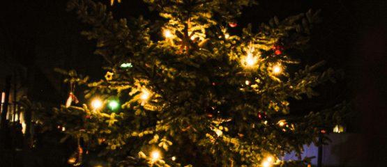 Ein Weihnachtsbaum für Alle!
