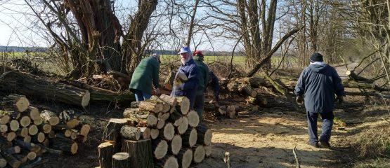 Holz für den kalten Winter