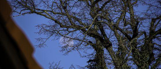 Heimatschule – eine weitere Baumaßnahme ist abgeschlossen