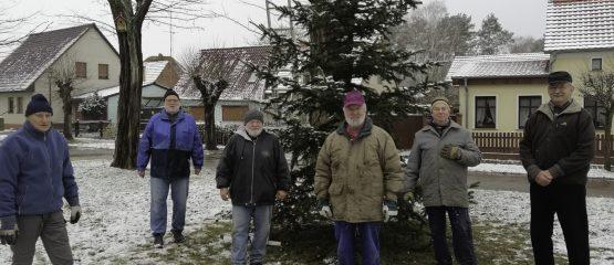 Auf Wiedersehen Weihnachtsbaum!